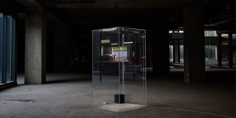 Sharjah Biennal - Bahar - Istanbloom - 2017 by İpek Çınar
